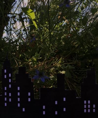 TL Frattini Diane - réinventer le paysage